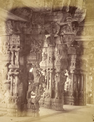Sculptured pillars in the interior of the Vitthala Temple, Vijayanagara 1686